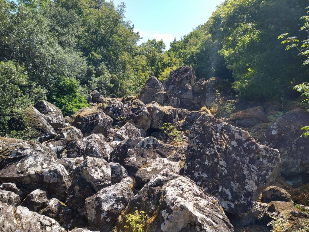 La foresta incantata, il marchese e il castello. Benvenuti nel Bosco del Sasseto